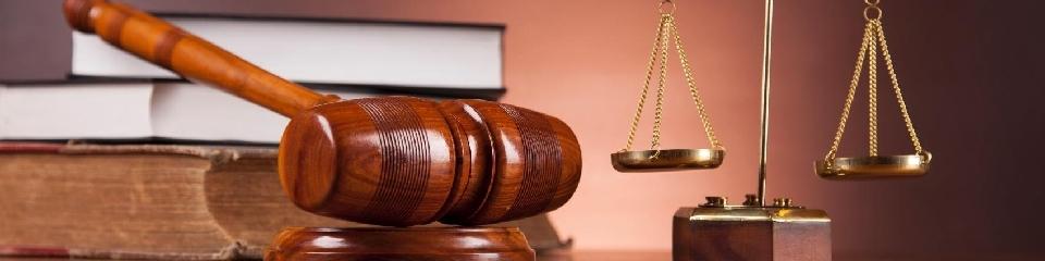 Profesionales del Derecho